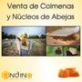 Venta De Colmenas Y Nucleos De Abeja
