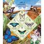2013 Insectos - Mariposas- Flores- Isla Salomon
