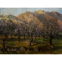 Nº 27 - Primaveral En La Montaña - Óleo De Egidio Cerrito
