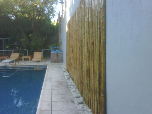 Ca as quemadas 2 mts decoracion macetas fibrocemento - Canas de bambu decoracion exterior ...