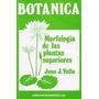 Botánica. Morfología De Las Plantas Superiores. H. Sur