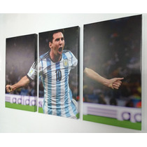 Cuadros Trípticos Messi Argentina