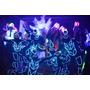 Cansado Del Robot Led ?? | Show Luxes | Tron Dance