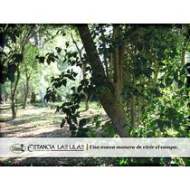 Lotes Y Terrenos En Lujan - Estancia Las Lilas - Chacras
