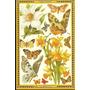 * Plancha De Cromos 23x15 Mamelok Press, Inglesas Ver Descr