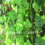 Planta Artificial Enredadera Promocion Promavera X10