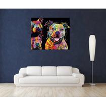 Pitbull Dean Art Bastidor Canvas 100x80 Cm -envios S/c