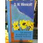Procesos De Maduracion Y El Ambiente Facilitador Winnicott