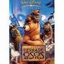 Tierra De Osos - Dvd Original