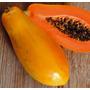Semillas Mamón Formosa Papaya X 100gr