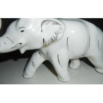 Elefante De Porcelana.blanco