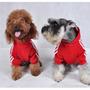 Buzos Para Su Mascota Adi___dog