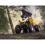 Can Am Ds250 Okm 2015 Ant. Y Saldo Con Cheques Personales