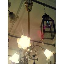 Araña Art Deco Bronce 3 Luces Con Tulipas