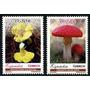 2007 Flora- Setas- Hongos - España