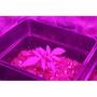 Panel Led 60w Cultivo Interior Crecim/flora -listo 220v