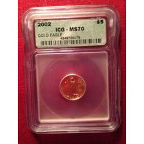 Moneda Usaantigua De Oro Ms70 Icg 2002 Gold Eagle 5$ Dolare