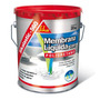 Sikalastic 560 - Membrana Liquida Con Poliuretano [ 20kg ]