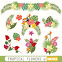 Kit Imprimible Tropical Flowers 10 Clipart - Vectores