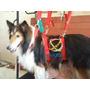 Arnés Para Peluquería Canina- Talle Grande
