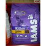 Iams Cachorro Kitten Gato 3 Kg Alimento Super Prmiun Chicken