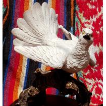 Estatua Antigua, Paloma Blanca, Italiana, En Base De Madera