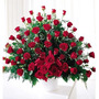 Arreglo 100 Rosas Importadas/ Flores