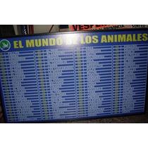 Cartel Animales Ó Nombres Luminoso Para Agencias Quiniela