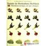 Libro Tratado De Horticultura Herbacea Illescas S. Plantas