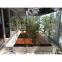 Tablas Maderas Deck Premium Eucaliptus Grandis Sin Nudo 1x3