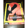 Enciclopedia De Los Animales National Geographic Aves Ii