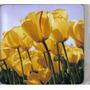 Pad Mouse Estampado Antideslizante Tulipanes