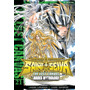 Saint Seiya The Lost Canvas #21 Hades Mythology Zona Devoto