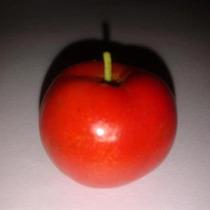 Cereza De Barbados = Acerola= Malpighia Glabra( Plantin)