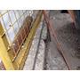 Viga Para Ladrilo Sapo 5 Metros Y Medio - Balvanera
