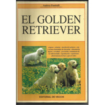 El Golden Retriever. Andrea Pandolfi