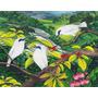Solamente Impresión, De 3 Pajaros En Tela Canvas 120x93