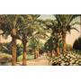 Antigua Fotopostal Paisaje De Niza Circulada -1913- (150479)