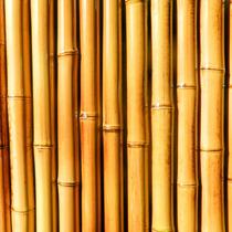 Cerco De Caña Tacuara Caña Bambu Panel Caña Quemada Venta