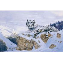 Tigre Blanco Impreso En Tela Canvas De 50x80 Cm - Exelentes
