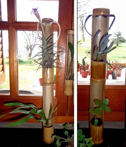 Original jardin vertical y souvenir ecologico ca a bamb - Bambu para jardin ...