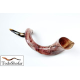 Shofar Entre 88 Y 95 Cms. Antilope Yemenita L + Manual +base