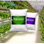 Fertilizante Hidroponia - Hidromíx X5kg - Para 4000 Litros