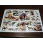 Billiken Antigua Lamina Los Animales Prehistoricos Szw