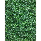 Muro Panel Cesped Artificial //jardin Vertical / Nª1/sheshu