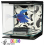 Pecera Acuario Decoracion Ambiente Pez Betta Pet Shop Beto