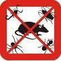Fumigaciones, Desratizaciones, Abejas,hormigas.zona Norte!!!