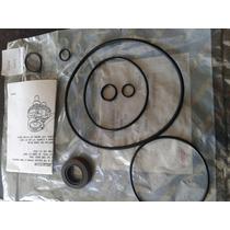Kit Reparación Bomba Saginaw Grande Perita