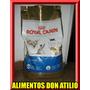 Royal Canin Siames X 7,5kg + 10 Kg Piedras Sin Cargo
