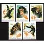 Cuba 1998. Fauna. Evolución Del Chimpacé (5)